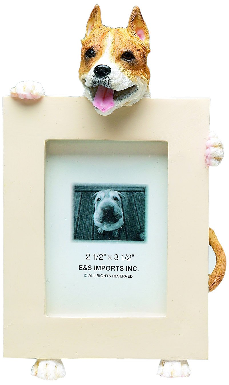 Pit Bull, Tan and White Picture Frame Holds Your Favorite 2.5 by 3.5 Inch Photo, Hand Painted Realistic Looking Pit Bull Stands 6 Inches Tall Holding Beautifully Crafted Frame, Unique and Special Pit Bull Gifts for Pit Bull Owners