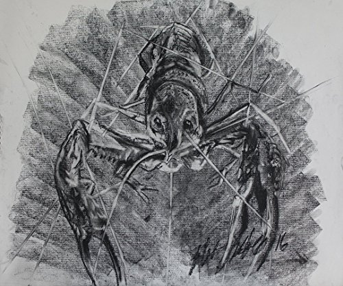 A bold crawfish born in charcoal by Kelani Arts