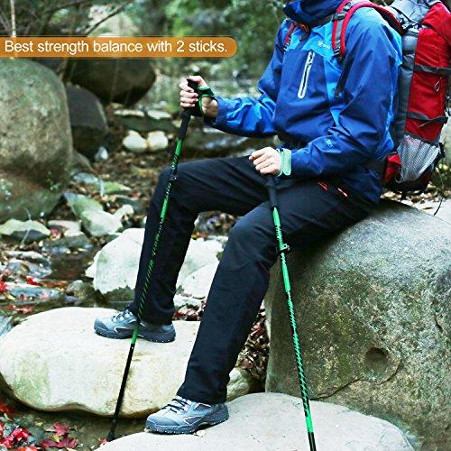 Buy collapsible walking stick
