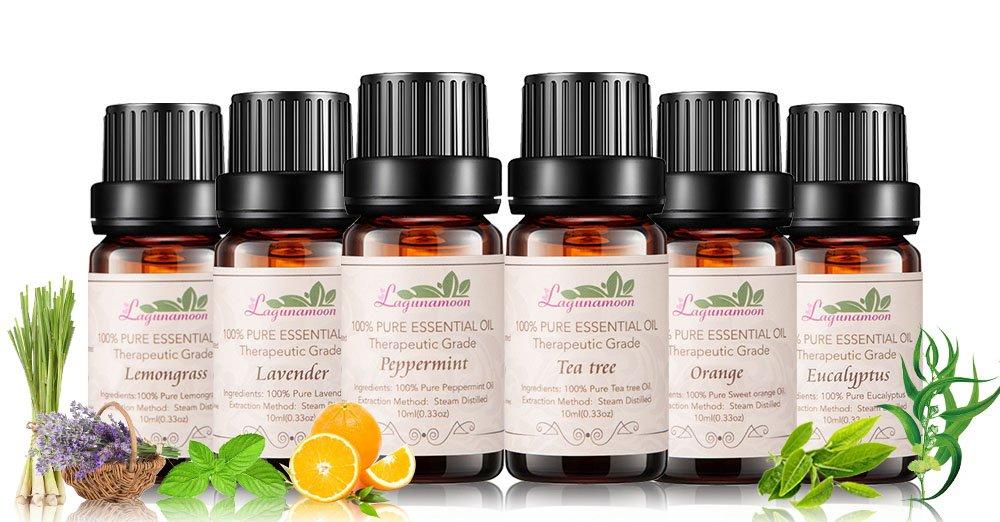 Aromatherapy Essential Oils Gift Set Top 6 100 Pure Premium Therapeutic Grade Oils Lavender Tea Tree