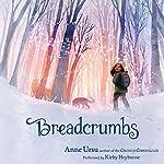 Breadcrumbs | Anne Ursu,Erin McGuire