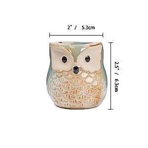 ComSaf Vaso per Pianta Grassa Vaso di Piante 6.5CM Gufo in Ceramica Smalto Collezione con Vassoio di bambù Set di 6, Fioriere di Cactus Contenitori Vasi di Fiori Decorativo Desktop Davanzale