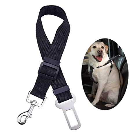 PINPOXE Cinturón de Seguridad para Perro, Gato, Coche, Cinturón de Seguridad, Arnés
