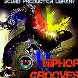 : Hip-Hop Grooves - the most useful - unique original Huge WAVE/Kontakt Multi-Layer Samples Library on DVD or download