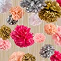 The Marsians Tissue Paper Flowers - Set of 18 Pom Poms Garlands - Happy Birthday Banners, Pom Pom For Wedding Gifts, For Bachelorette Party Kit, Colorful Flower Decorations, Baby Shower, Arts, Crafts