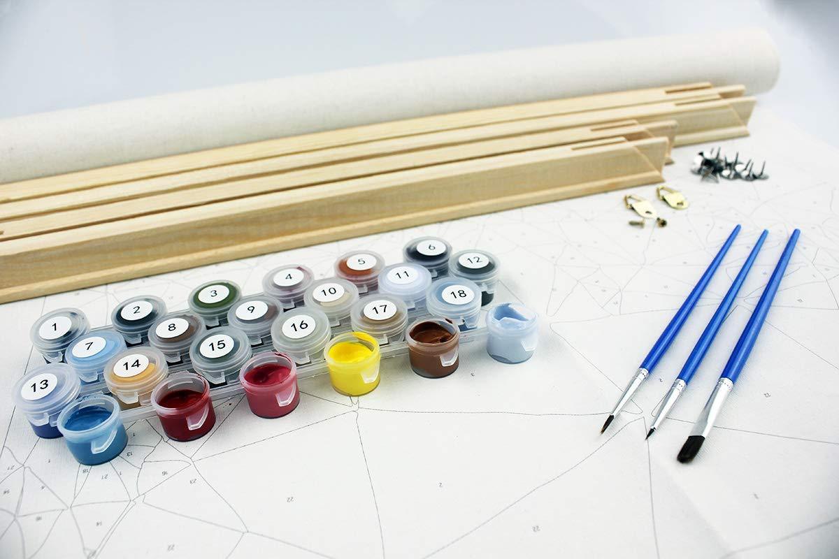 Couloir arbre vert 40cm/×50cm en bois encadr/é Peinture au num/éro en bois encadr/é Toile Peinture /à lhuile DIY avec Brosses et peintures acryliques pour Adultes et enfants