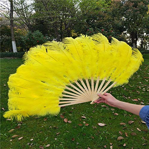 Maslin YY-tesco White Ostrich and Marabou Feather Fan Burlesque Showgirl & Boudoir Decorative Feather Fan Dance Party Wedding Props - (Color: -
