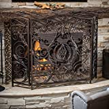 Mariella Black Gold Finish Floral Iron Fireplace Screen