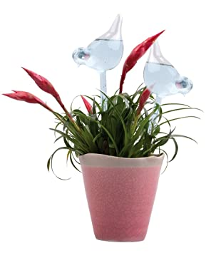 Juego de 2 de riego Varilla de riego bolas dispensador de agua para flores plantas de