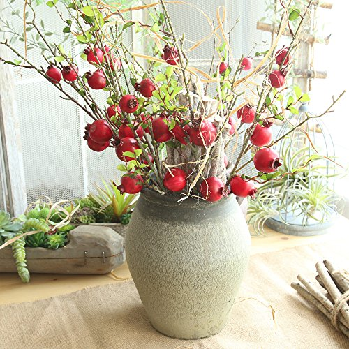 Artificial flower,Fake Rose Fruit Pomegranate Berries Bouquet Long Dry Branch Floral For Garden Home Decor (Red) by MaxFox (Image #2)