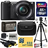 Sony Alpha A5000 20.1 MP Interchangeable Mirrorless Lens Camera with 16-50mm OSS Lens ILCE5000L (Black) with Best Value Accessories Bundle Kit includes 16GB Class 10 SDHC Memory Card + Replacement (1200mAh) NP-FW50 Battery + Professional 60 Inch Photo/Video Tripod + Hard Shell Carrying Case + High Speed USB Reader/Writer + HDMI Cable + Camera Lens Cleaning Kit + Bonus $50 Gift Card for Digital Prints