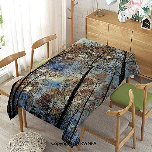 Homenon Wipe Clean Tablecloth for Rectangle Tables,Tree Tops Against The Sky Majestic Pines Scary Radiant Nature View Tranquil Print,Indoor Outdoor Camping Picnic,Blue Brown,55