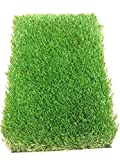 All Season Prime Synthetic Grass - Artificial Turf - Drainage Holes, 2'' blades Great for Sunny Climates (10' x 15')
