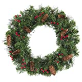 "Best Choice Products 24"" Spruce Christmas Wreath W/ 50 Clear Lights, Silver Bristles, Pine Cones, Red Berries"