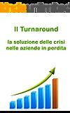 Il turnaround. La soluzione delle crisi nelle aziende in perdita. (Gestione e Soluzioni delle Crisi Aziendali Vol. 4)
