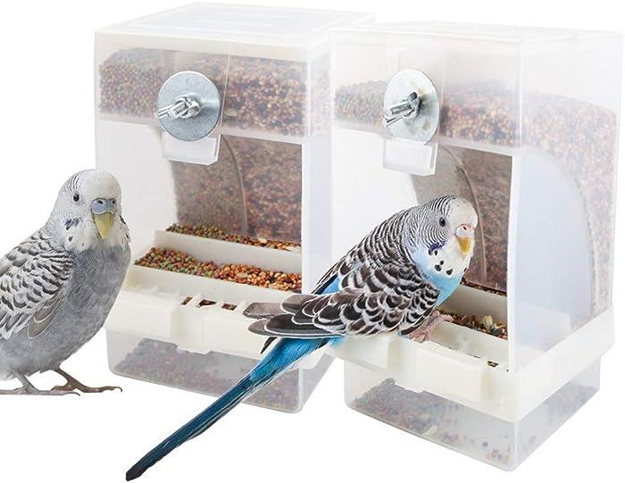 The Best Cockatiel Food Dispenser