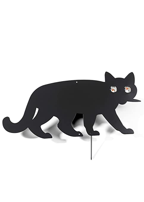 Wenko pájaro Ahuyentador gato, Negro