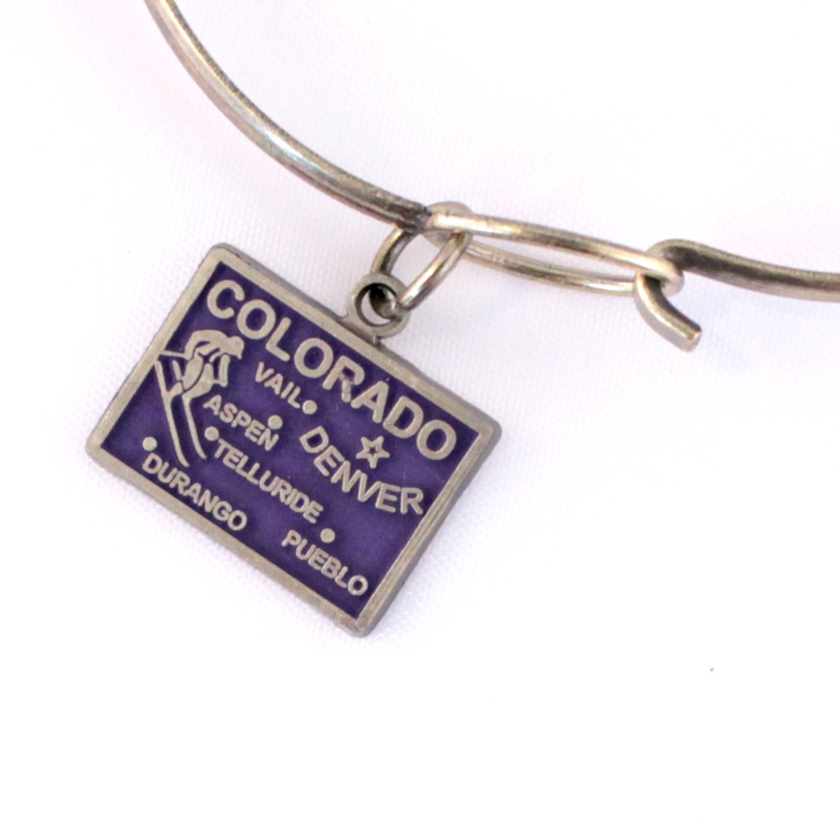 Colorado State Love Charm Bracelet or Necklace