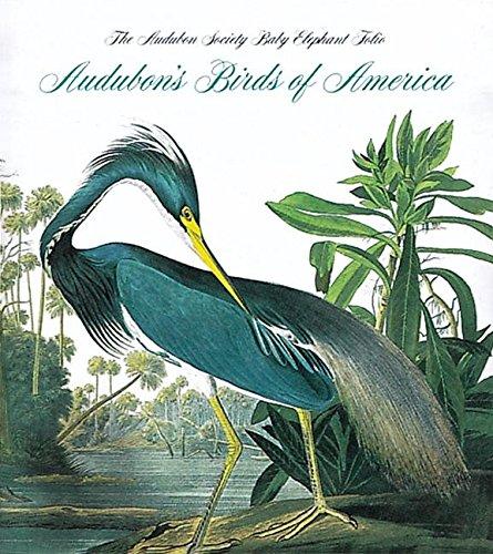 Audubon's Birds Of America  The National Audubon Society Baby Elephant Folio  Tiny Folio