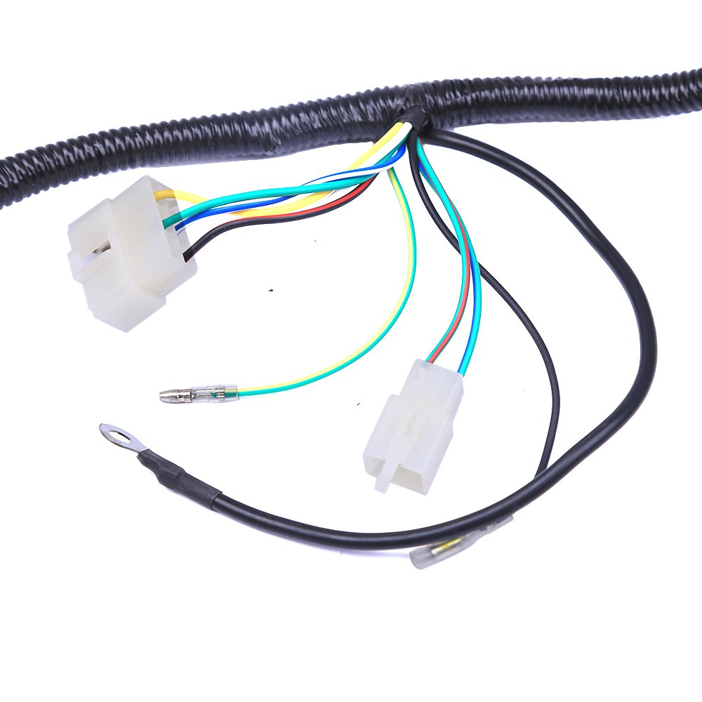 Complete Electrics Atv Quad 200 250cc Wiring Harness Ssr 125 Diagram Get Free Image About Cdi 3 Holes Automotive