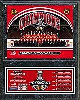 "Chicago Blackhawks 2015 Stanley Cup Champions Plaque (Size: 12"" x 15"")"