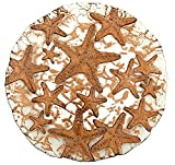 Sea Star Dessert Plate Mirror Bronze, 8.5-Inch (Set of 2)