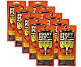 Fruit Fly BarPro 10 Strips (Foodservice Pack) Fruit Fly Killer (4 Months of Protection) (10)