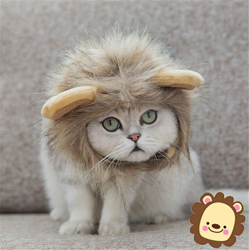 Pet Costumes Lion Mane Wig - Realistic & Funny Cat Costume and Small Dog Costume with Complimentary Feathered Catnip Toy Hat with Ears for Halloween, Christmas
