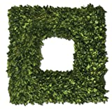 Uttermost Preserved Boxwood Square Wreath 4.5 x 22 x 22""