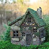 Cheap Miniature Fairy Garden Woodsy Way