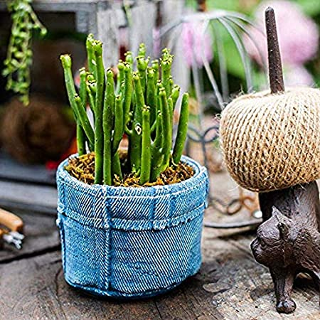 Estatuas para Jardín Pot Jeans Bolsillo De La Flor Pequeña Flor Impermeable Jardín Esculturas para El Patio del Césped del Paisaje Ornamentos del Jardín Crafts Flower Pot: 20 * 20 * 9cm: Amazon.es: Hogar