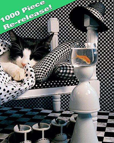 Checkerboard Cat (Checkerboard Cat)