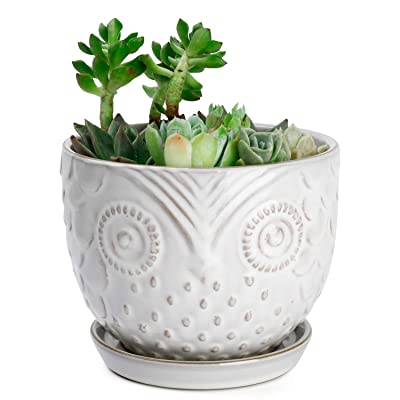 Greenaholics Plant Pot - 6.1 Inch Owl Ceramic Planters for Medium Plant,Ivy, Snake Plant, with Attached Saucer, Beige&Brown Grain: Garden & Outdoor