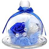 TEATSIGHT プリザーブドフラワー フラワーアレンジ ラッピング済み ガラスポット入り 2輪 (バラ 白×青)