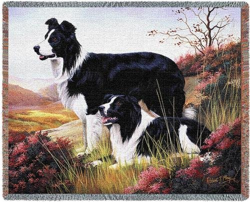 (Pure Country Weavers - Border Collie Woven Tapestry Throw Blanket with Fringe Cotton USA Size 72 x)