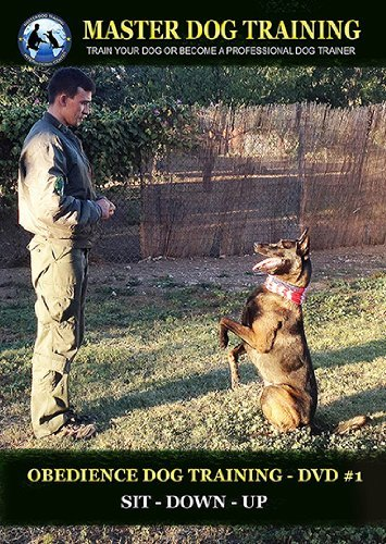 Obedience Dog Training #1; Sit – Down – Up