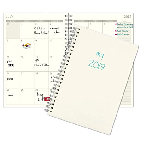 2019 Planner, Weekly & Monthly Planner, January 2019 - December 2019, Spiral Bound, 5