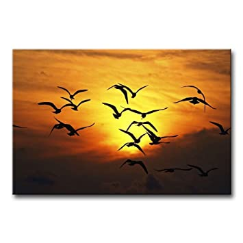 Amazon.com: AntonioNoel Wall Art Painting Bird Flock Silhouette In ...