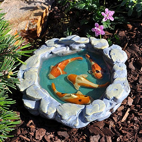 Miniature fairy garden tranquil koi pond buy online in for Koi pond price