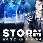 Storm: Elemental, Book 1 | Brigid Kemmerer