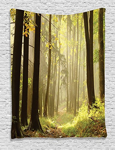 Ambesonne Farm House Decor Collection, Trail Leading Through a Misty Autumn Woods the Mountain Along Tall Trees Picture, Bedroom Living Room Dorm Wall Hanging Tapestry, Olive Green