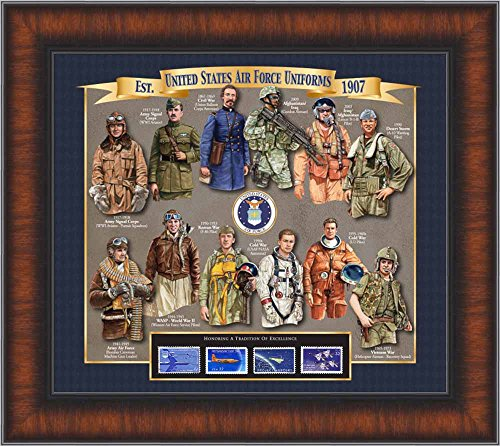 (Air Force Uniform History - Unique Framed Collectible (A Great Gift Idea) with Personalized Engraved Plate with Personalized Engraved Plate)