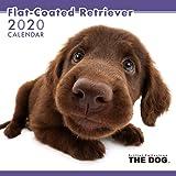 THE DOG カレンダー フラットコーテッド・レトリーバー 2020年