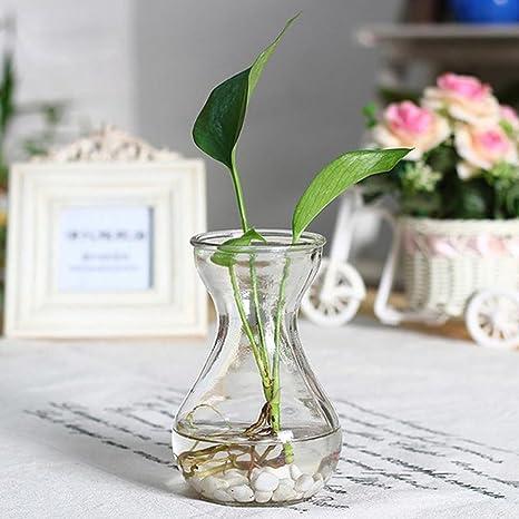 Skyeye Jarrón de Jacinto de Vidrio Transparente,Decoracion Adecuado para Plantas pequeñas en macetas o