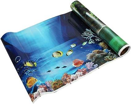 Amazon Com Norbi Fish Tank Background Hd 3d Drawing Aquarium
