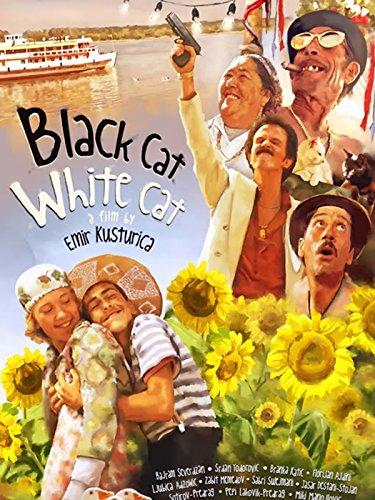 - Black Cat, White Cat