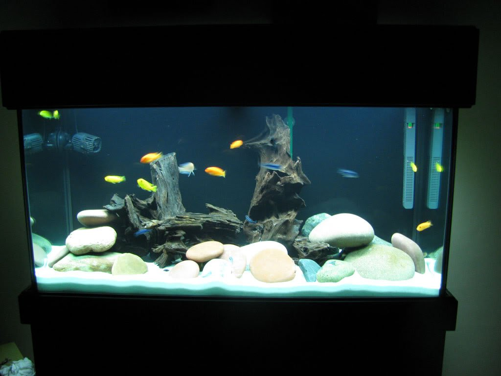 Fish Tank Gravel 2 kg Fluorescent Tricolour Bright Green Purple Black Aquarium