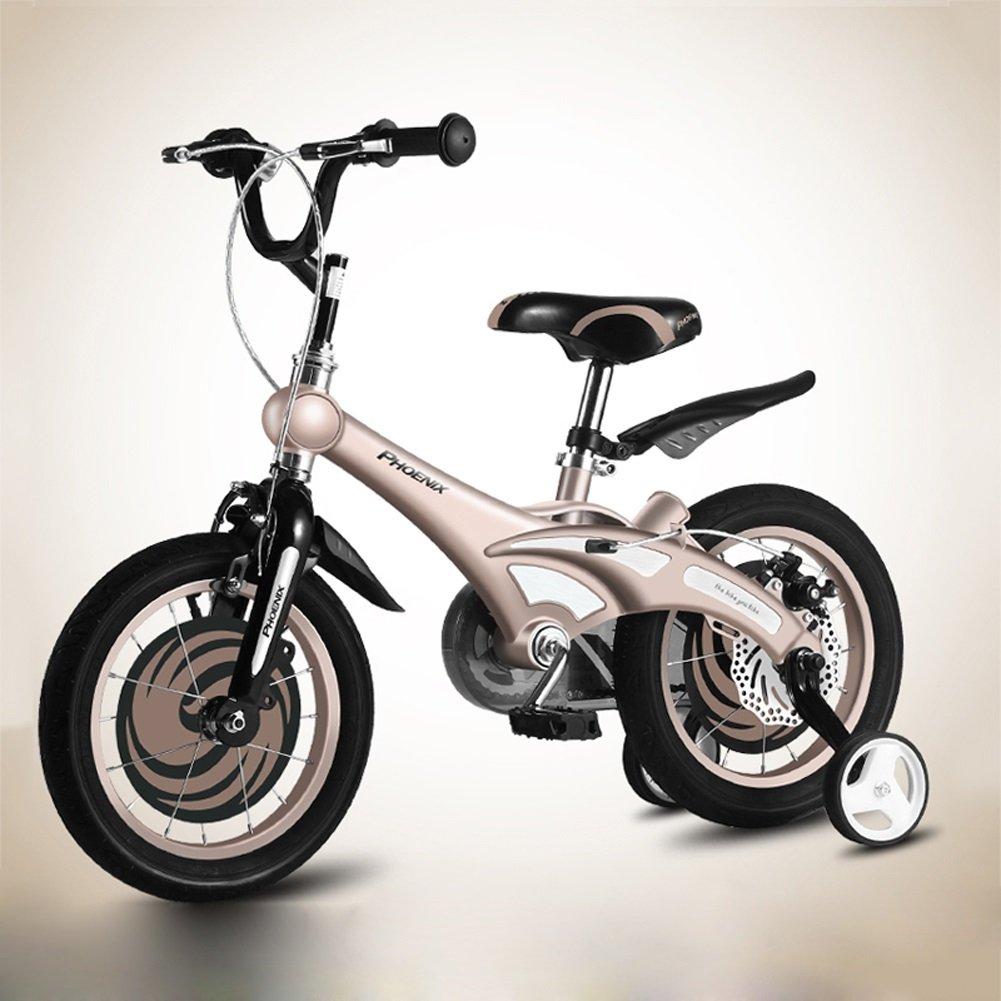 CHS@ 子供用自転車2-4-6-8歳の自転車12/14/16/18インチベビーキャリッジユニセックス子供用サイクリング 子ども用自転車 (色 : ゴールド, サイズ さいず : 12
