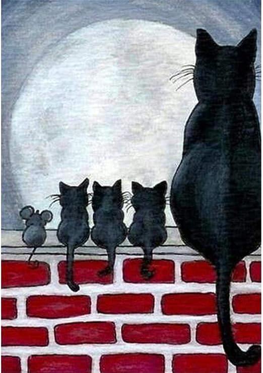 Black White Cats Cats 5D Diamond Painting Cats Staron DIY Diamond Embroidery Rhinestone Painting Cross Stitch Kit Wall Art Decor 5D Diamond Painting Art Craft Home Decor