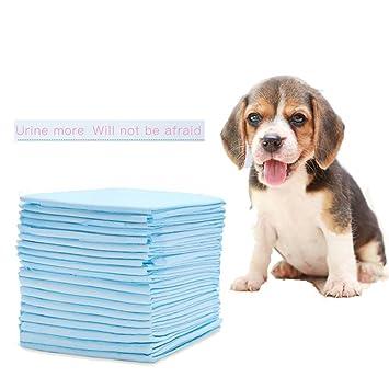shanzhizui Pañales fisiológicos para Perros Desodorante espesante de una Sola Vez Pañales para Perros Suministros de